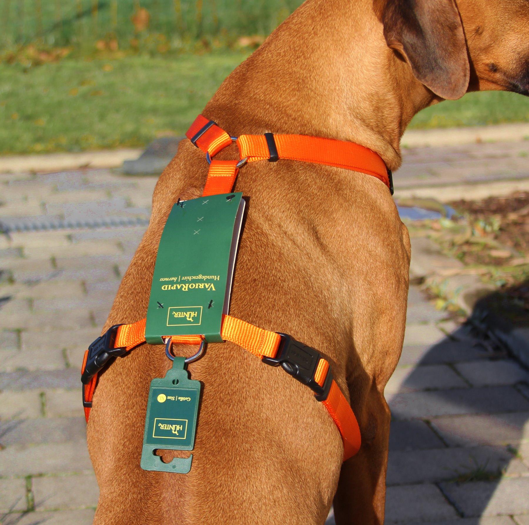 Petsam Hunter Orange Vario Rapid Brustgeschirr Hundegeschirr Xl